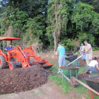 Mulching at the Big Island site, Nov 30, 7.30am