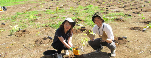 Tree Planting with Japanese Students, Tues, June 13, 9 – 11.30am